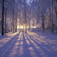 On the Winter Solstice  – by Uncle Dean