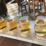 "Mount Horeb gets ""Wisconsin's first (full-service) Cider Bar"""